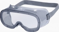 "Delta Plus Schutzbrille ""MURIA 1"""