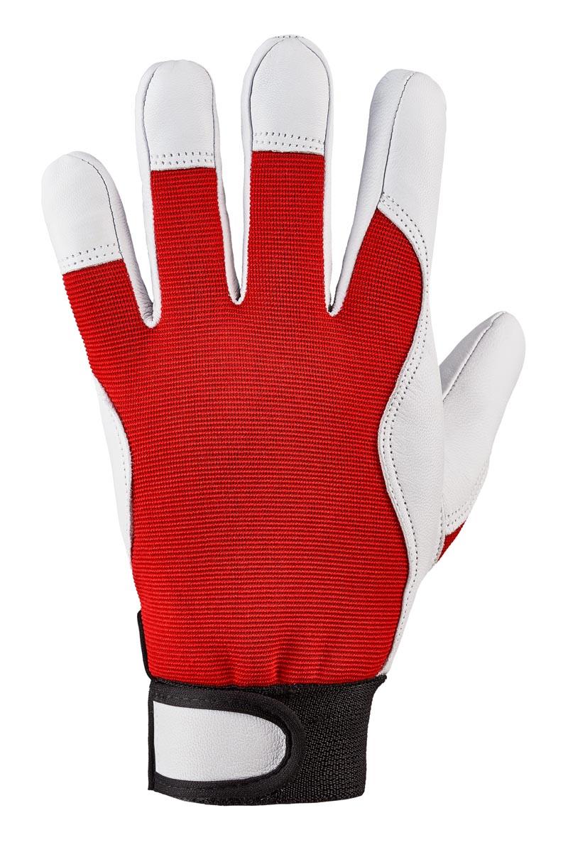 """Nappaleder-Handschuh """"CARVER"""" (Karton) 8"""